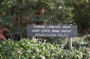 giant earth worm habitat