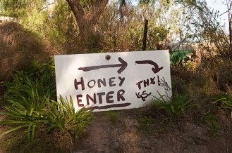 honey enter
