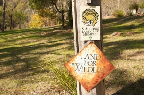 land for wildlife