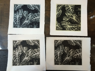 final prints in different coloured inks